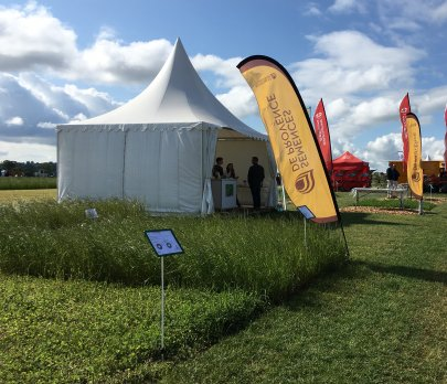 Salon de l'herbe 2019