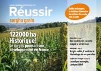 Couverture Réussir sorgho grain 2021