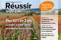 Réussir sorgho grain 2020